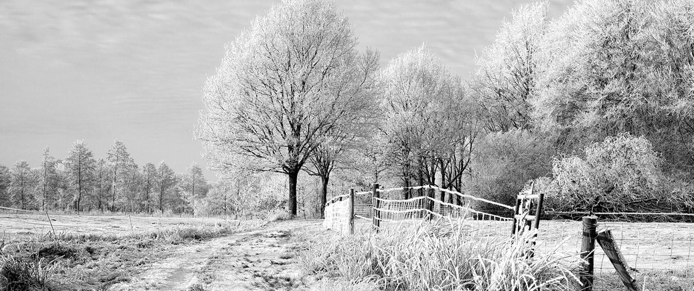 Afbeelding zwart - wit van Nienoord Leek