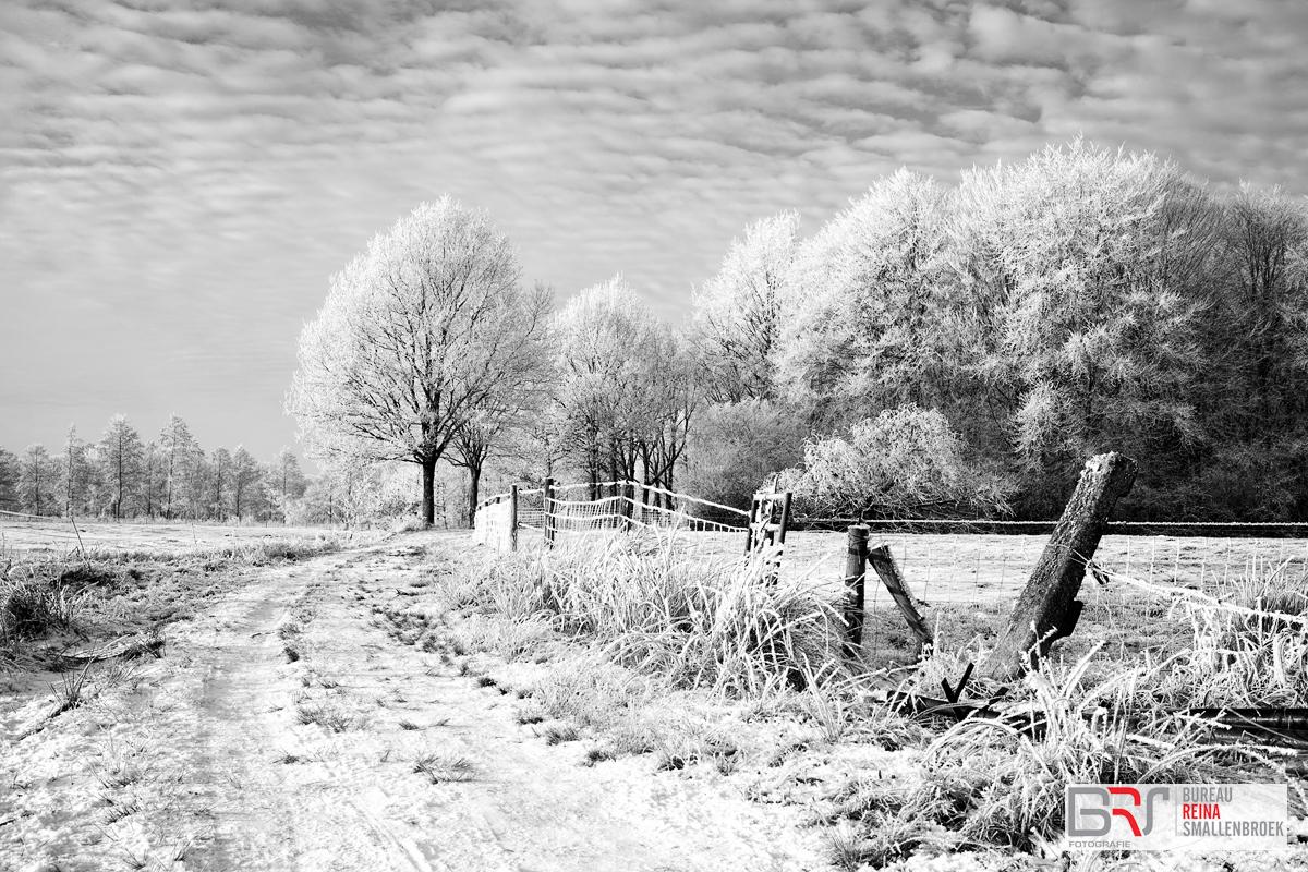 Hek in de sneeuw Nienoord Leek