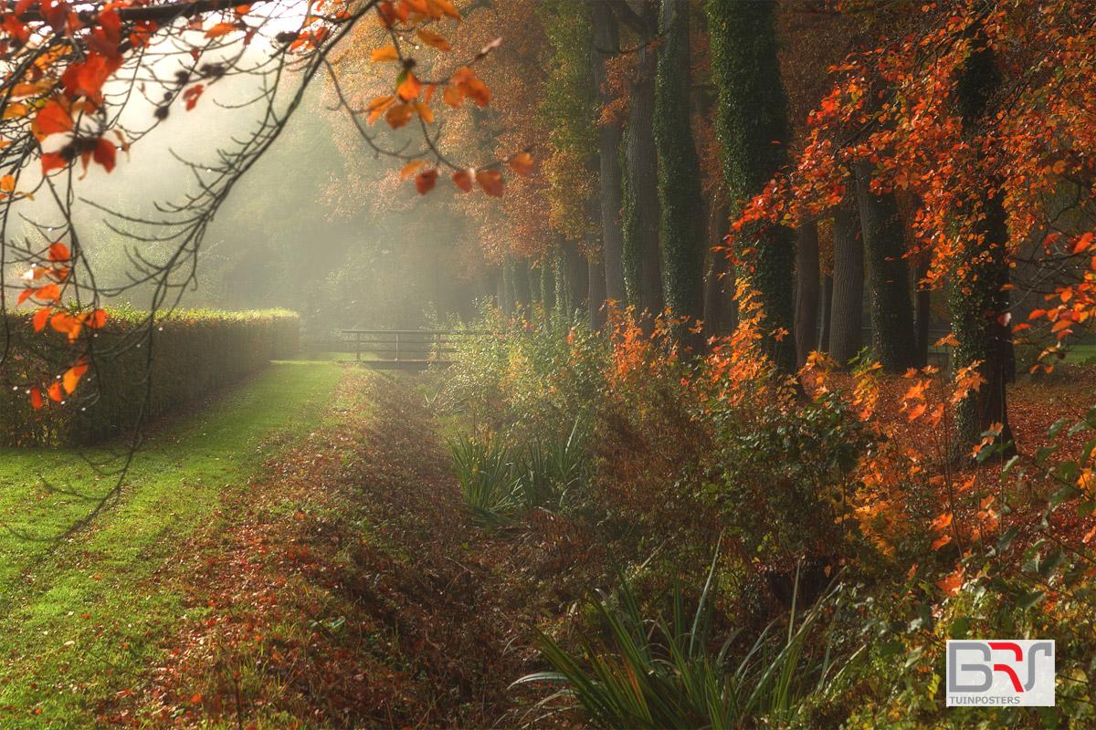 bruggetje-Coendersborg-Nuis-tijdens-mistige-ochtend-in-de-herfst