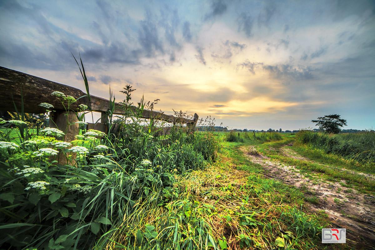 landelijke-zonsondergang-in-De-Onlanden