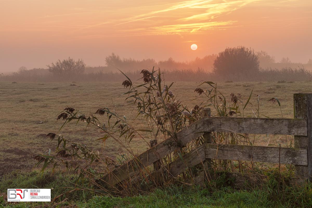 Leekstermeergebied in de mist