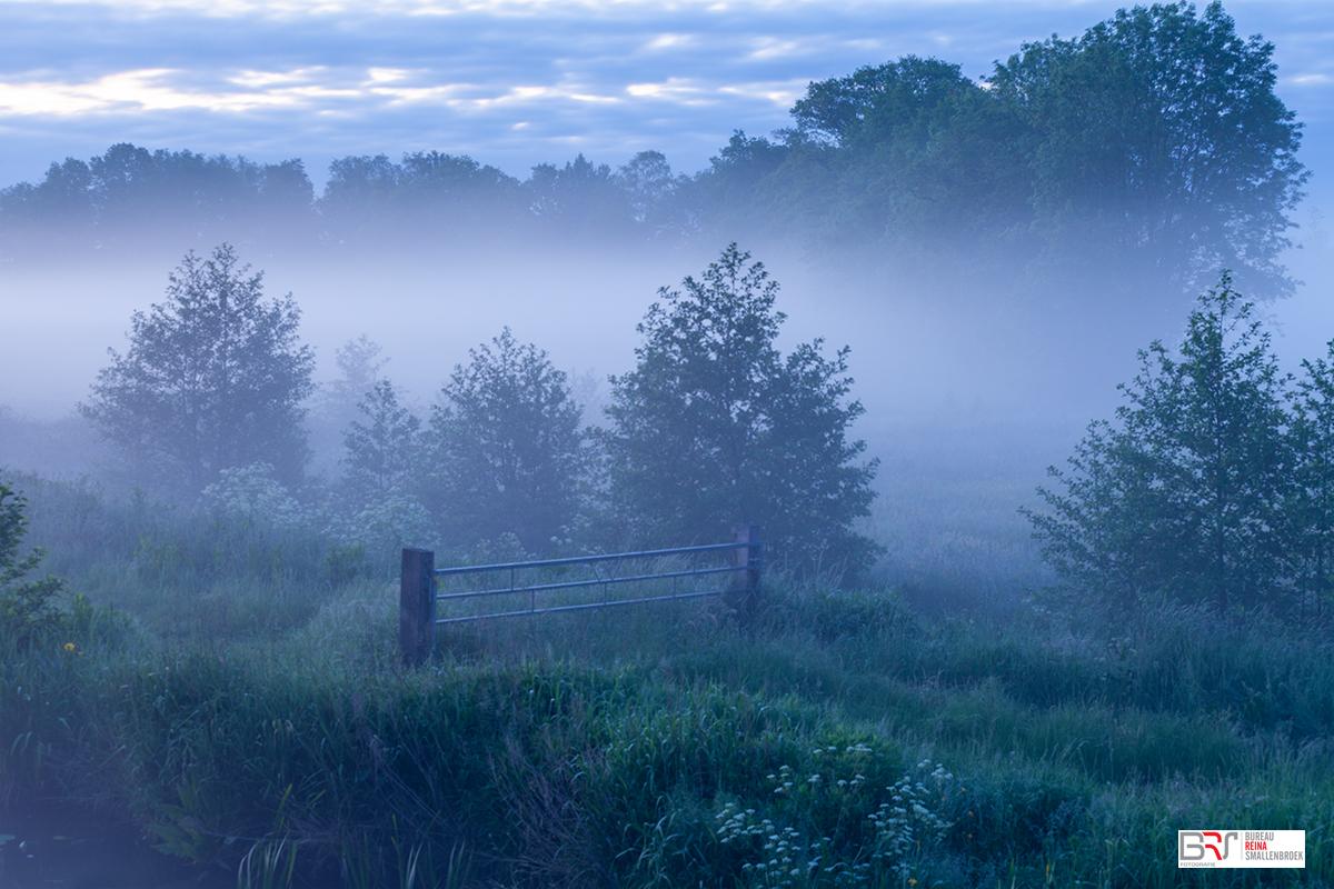 Mist in de polder van Leek